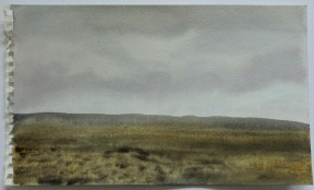 Suðurstrandarhraun // South Coast lava field 15x25 2014